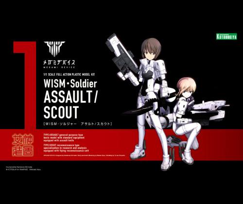WISM Soldier Assault/Scout